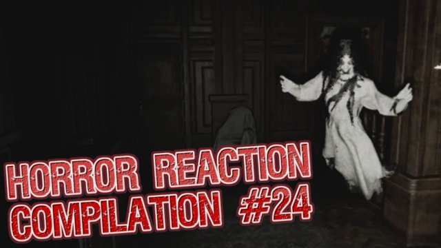 Horror Reaction Compilation 24