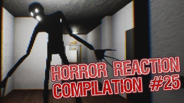 Horror Reaction Compilation 25